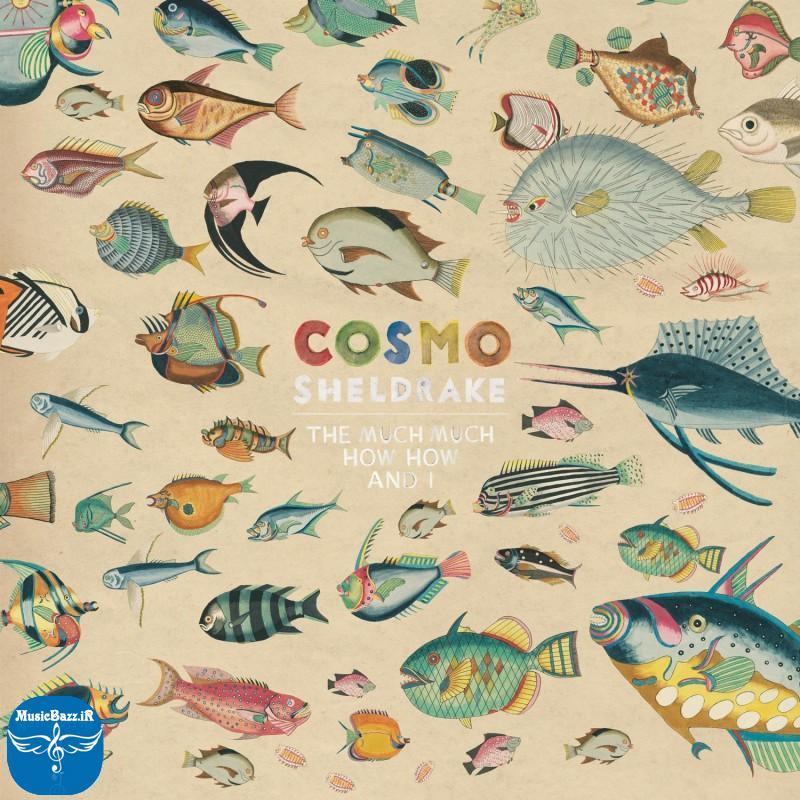 دانلود آهنگ جدید Cosmo Sheldrake به نام Come Along