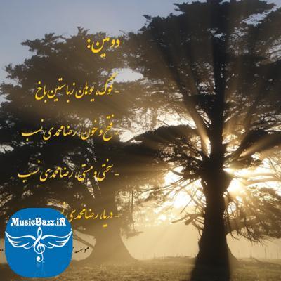 آلبوم دومین اثری از رضا محمدی نسب